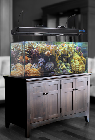 Quality fish tank stand high quality fish tank with big for How to build an acrylic fish tank