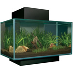 Matte Black 6 Gallon Edge Aquarium