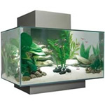 Pewter 6 Gallon Edge Aquarium